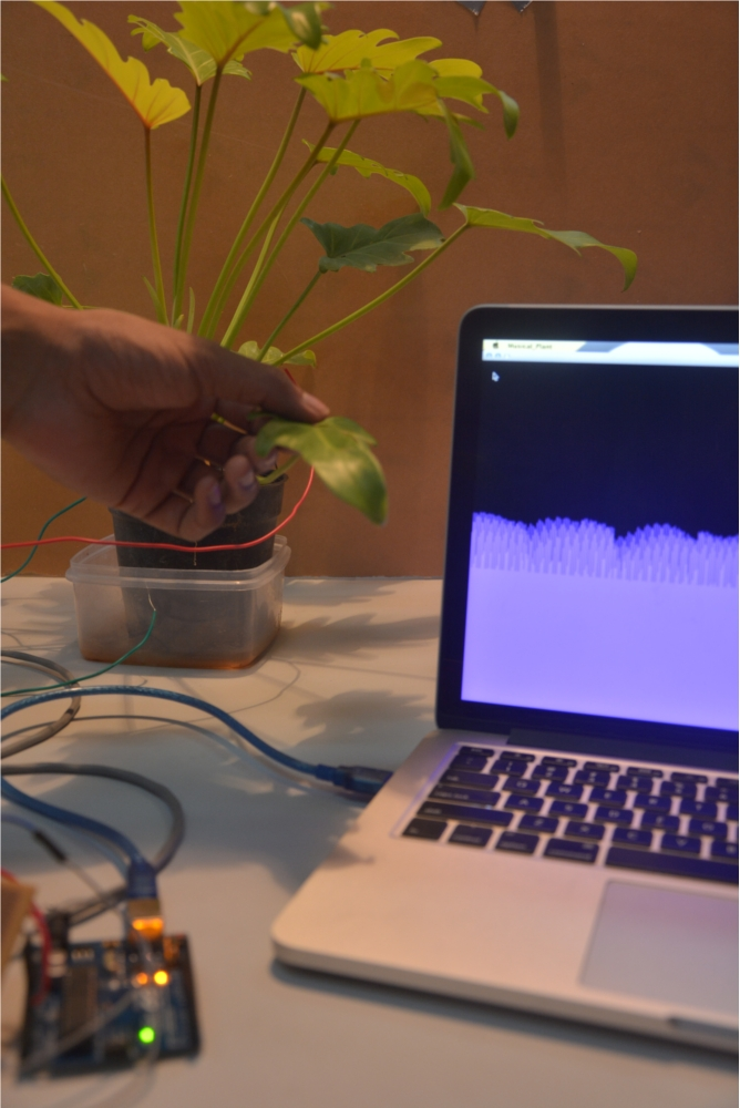 PlantInterface01