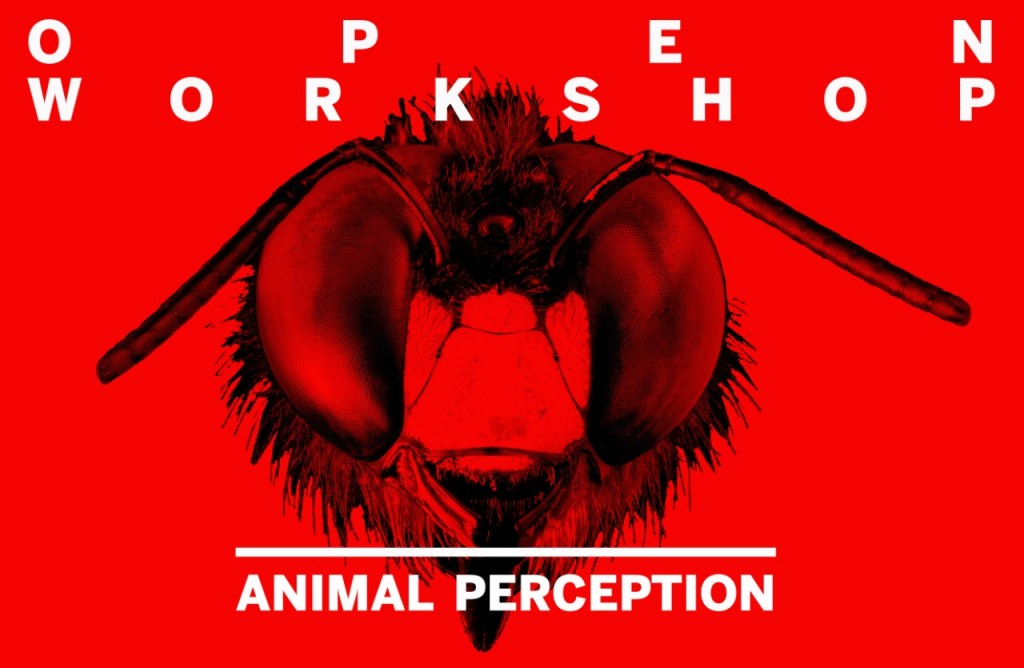 Animal Perception