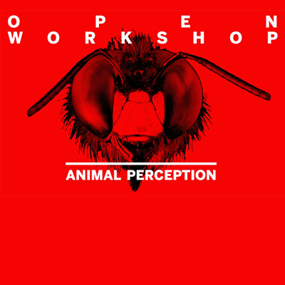 Open Workshop: Animal Perception